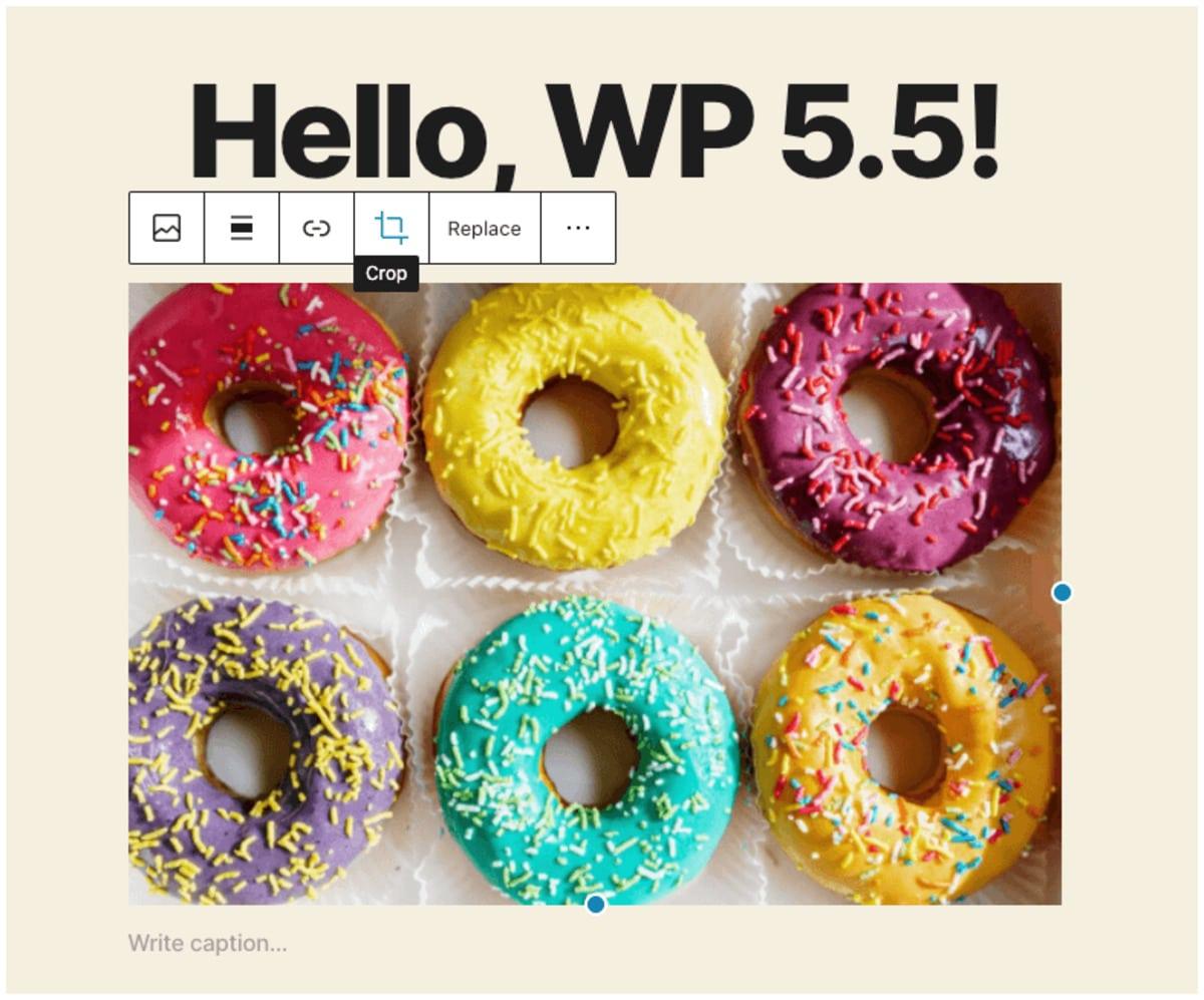 Plugin wordpress 5.5