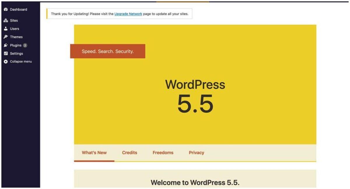 wordpress 5.5 update